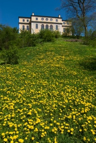 Frühling auf Schloss Ettersburg. Foto Axel Clemens.